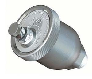 Auto air bleed valve for solar hot water systems